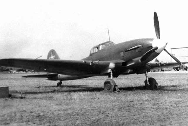 IL-10_01.jpg