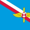 PL_air_force_flag_55-59.jpg