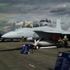FA-18F_SH.JPG