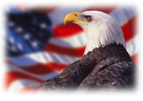 EaglesFly.wmv