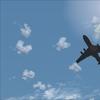 fs9 2010-09-27 18-12-46-18.jpg