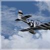 P-51D Mustang 13.jpg