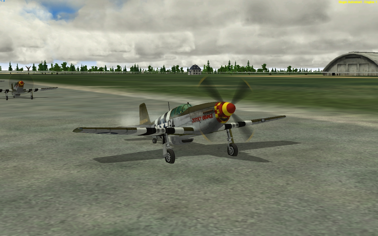 P 51 Jersey Bounce 2