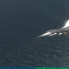 Falcon 4.0 BMS 4