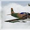 A 1 Skyraider 01