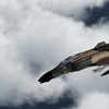 F 4D Phantom 02