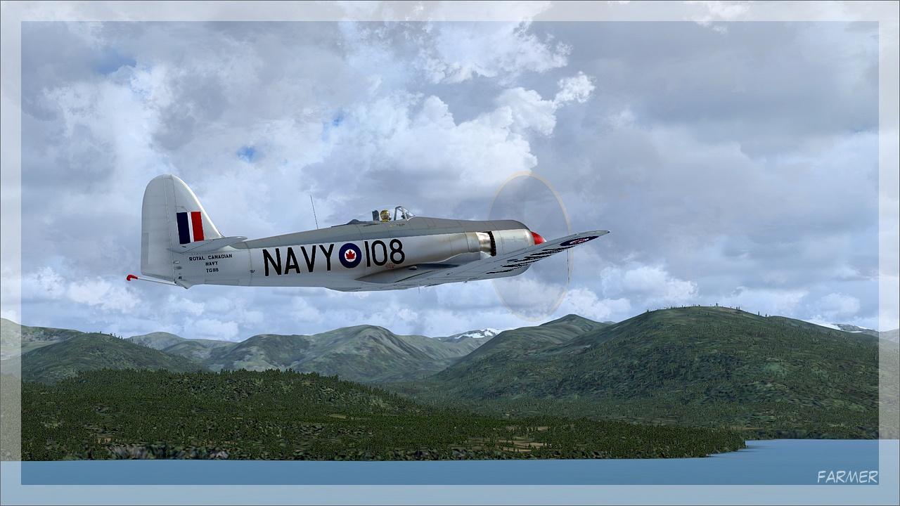Sea Fury 15