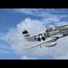 P 51B Mustang 16
