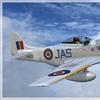P 51D Mustang 30