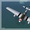 P 51B Mustang 19