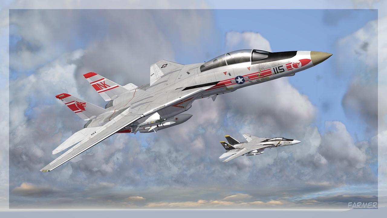 F 14A Tomcat 22