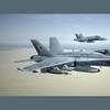 F 18 Hornet 04