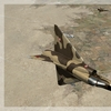 Mirage 5DA 01
