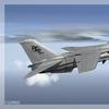 F 14A Tomcat 20