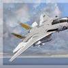 F 14A Tomcat 21
