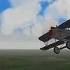 Jasta 34b Albatros DV #3, First Eagles