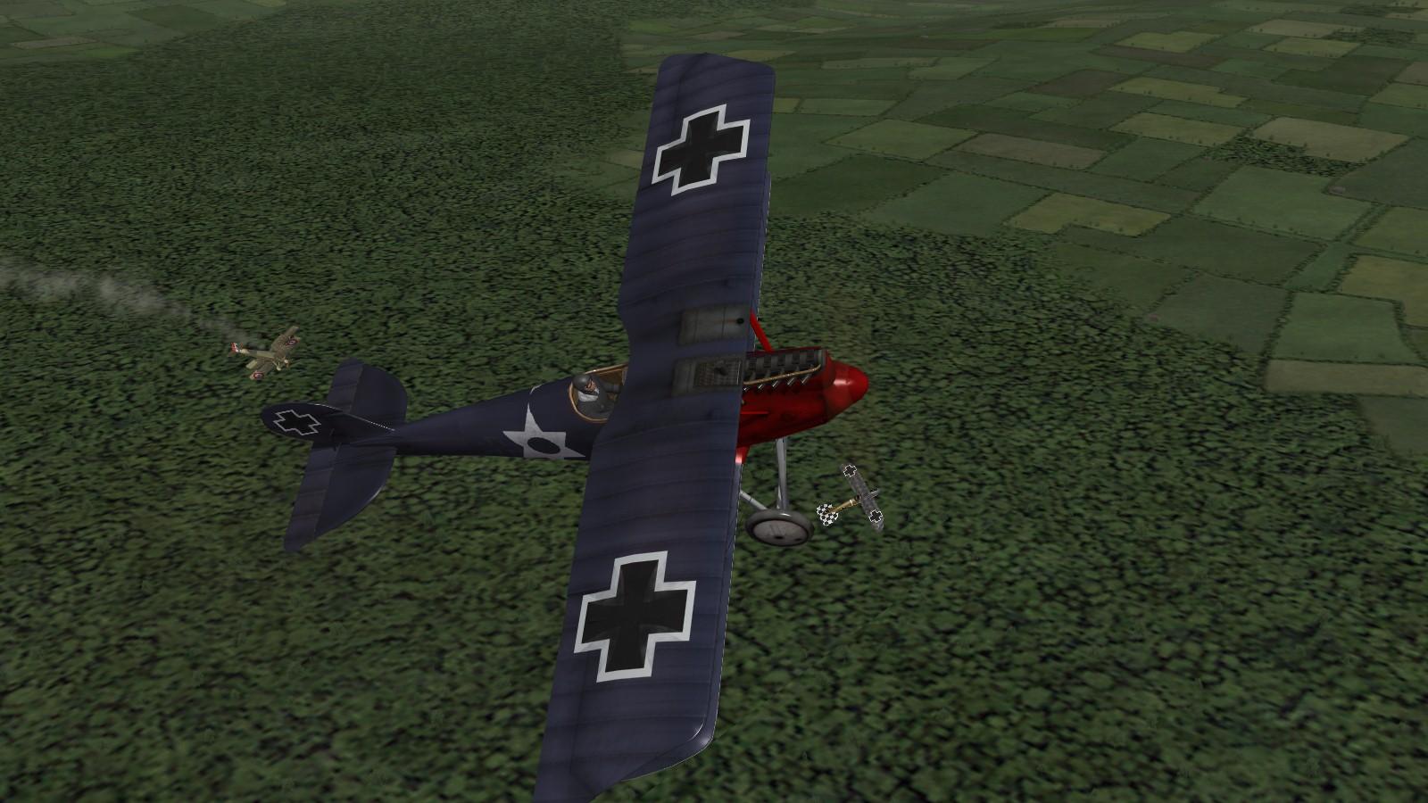 First Eagles 2 - Pfalz DIIIa & Albatros DV share a kill