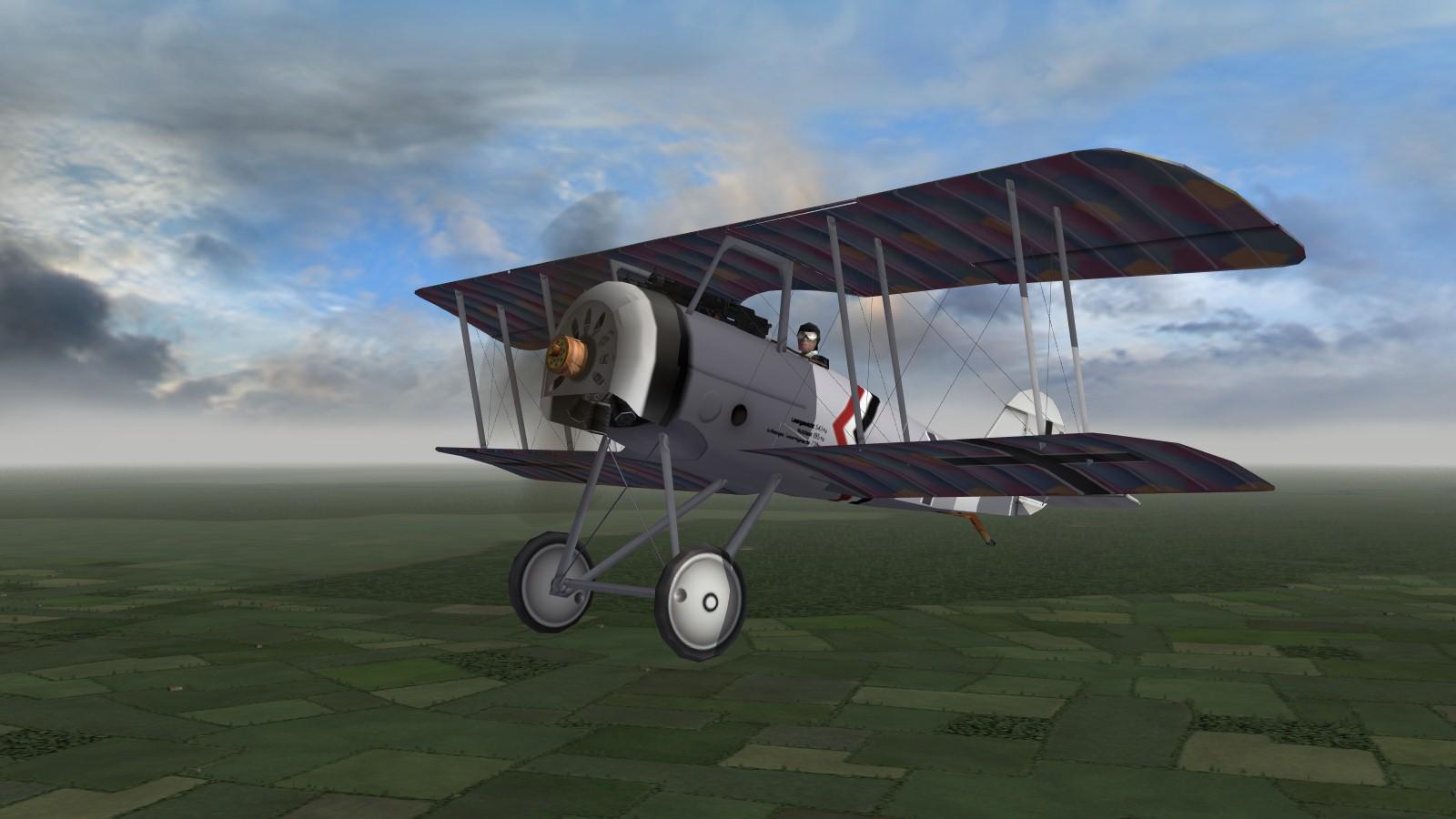 First Eagles 2 - Pfalz DVIII