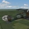 First Eagles 2 - Pfalz DXII
