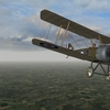 First Eagles 2 - Sopwith Pup, 66 Squadron