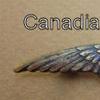 RFC Canadian Airmen