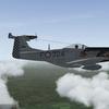 F 51D 3º Eskuadron AURI  late 50