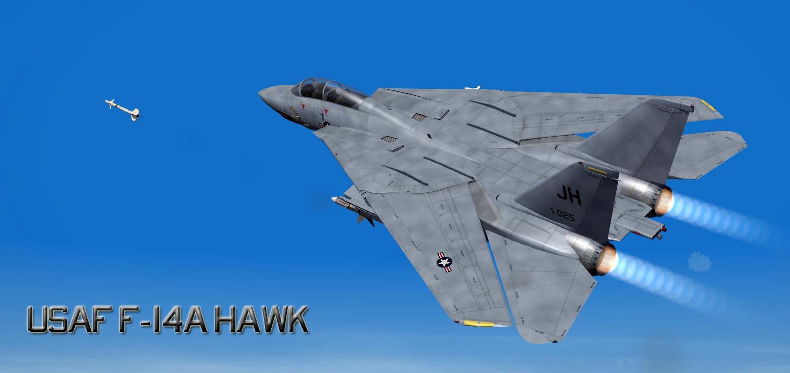 USAF F 14A 1