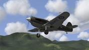 P-40B, Il-2 '46+CUP