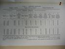 Sopwith Triplane 130 Clerget RFC Test