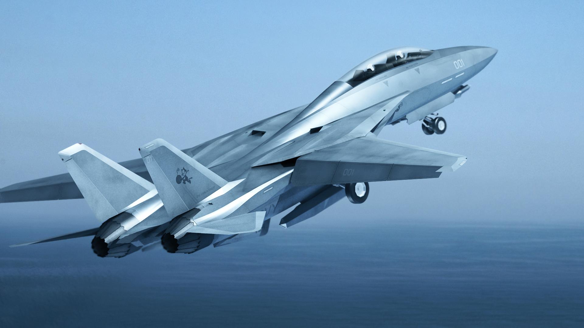F 14Z Fly