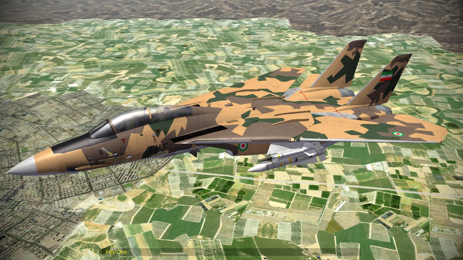F-14AM