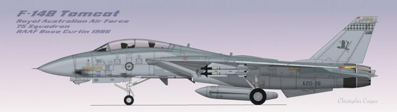 F-14BRAAFIndonesia1.jpg