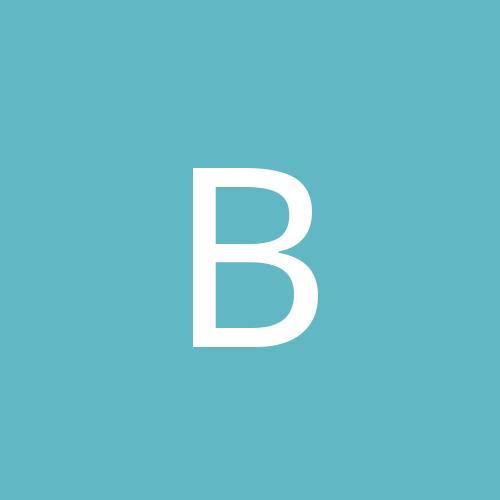 bobtbird
