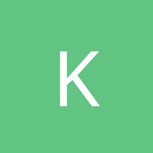 kiwikat