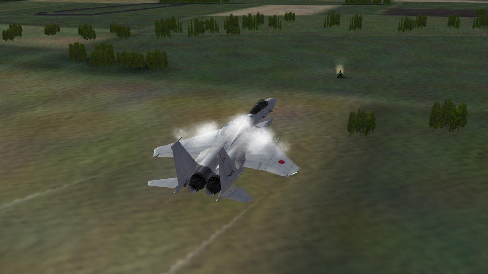 Inspecting the JGSDF Point Defenses