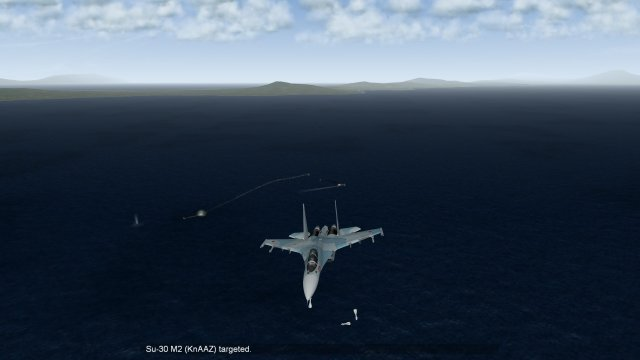 Su-30 Dropping All Weapons