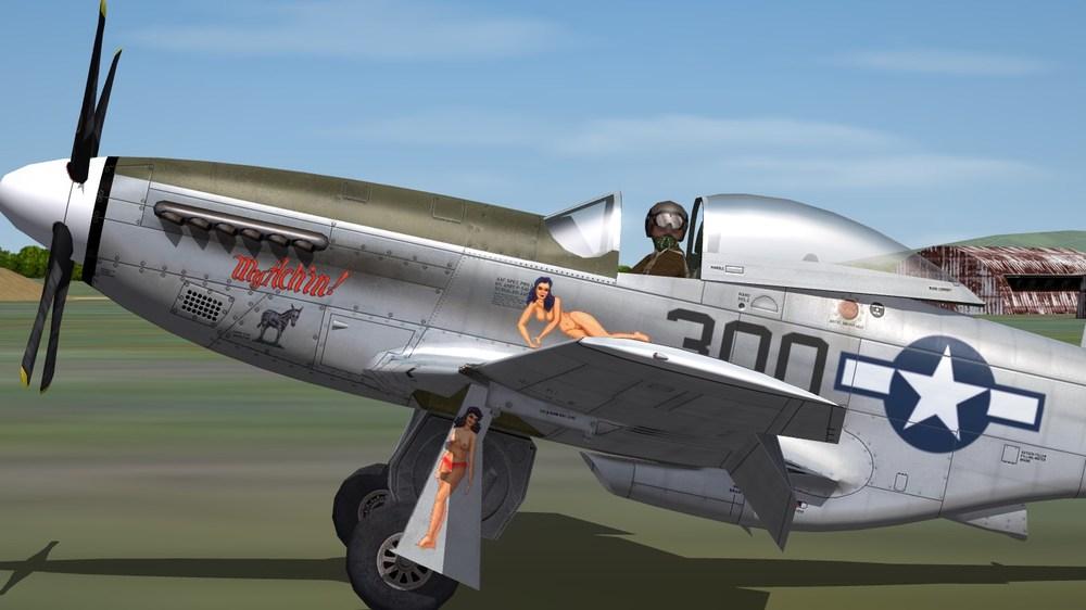 531st FS.JPG