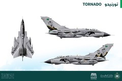 Saudi Arabia Air Force