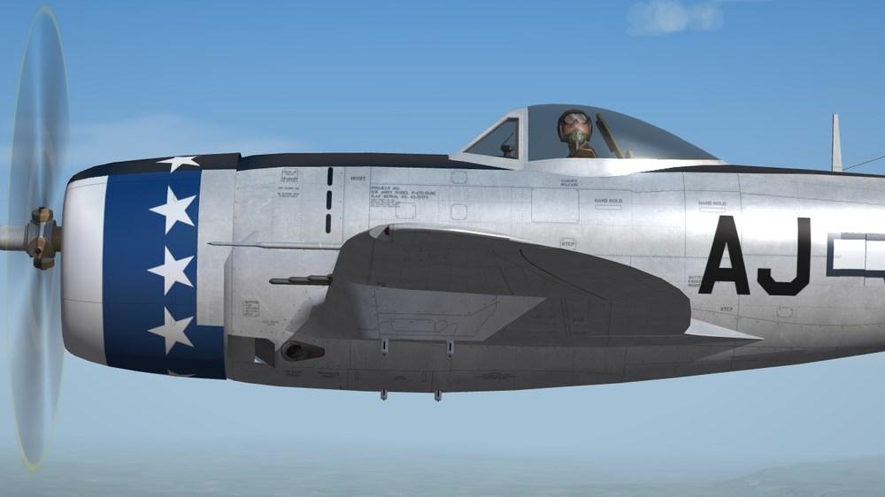 356th FS.JPG