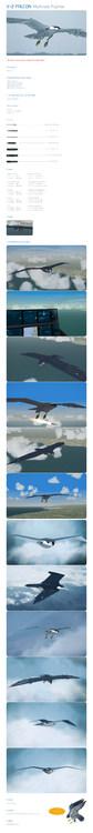 V-2_Falcon- Detail.jpg