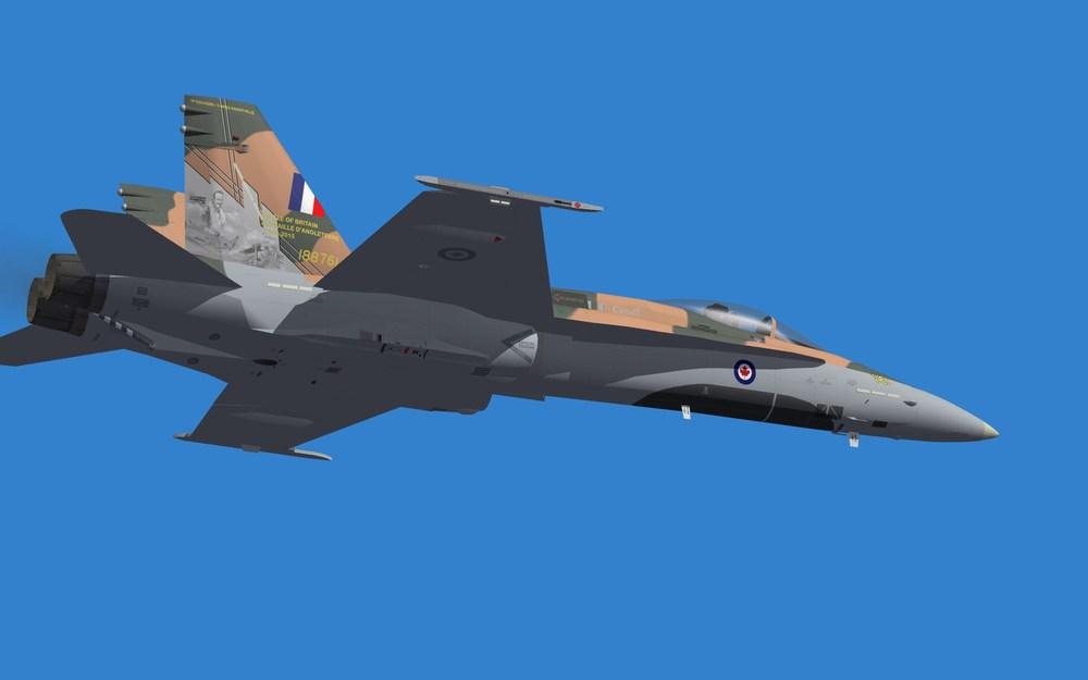 RCAF 2015 DEMO (2).JPG