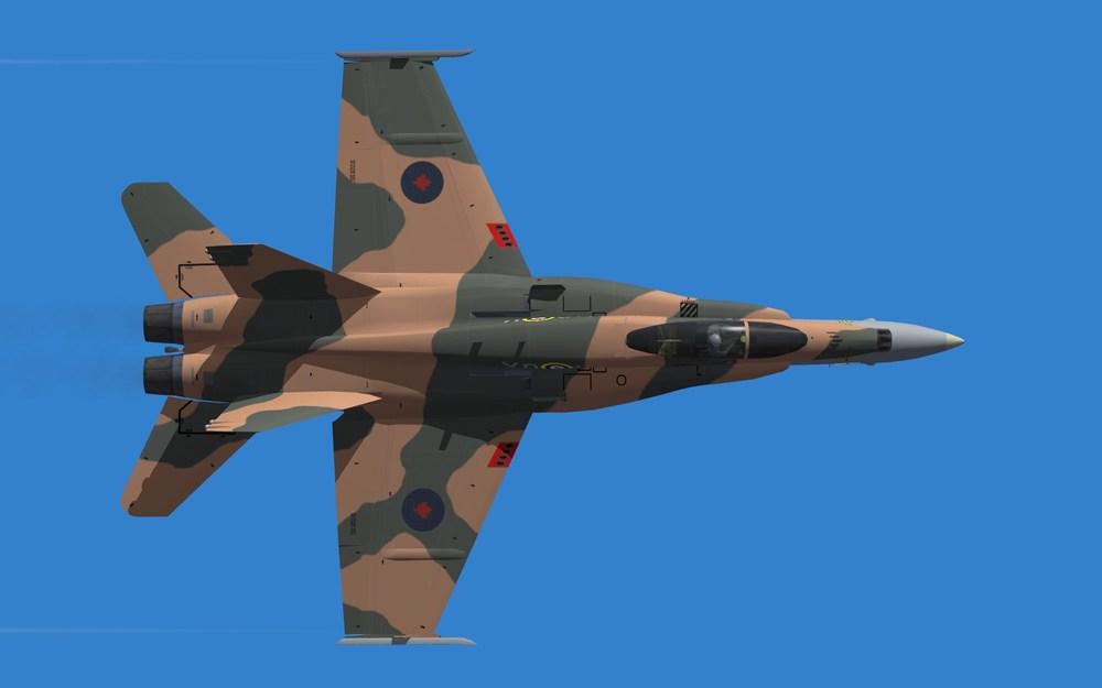 RCAF 2015 DEMO (1).JPG