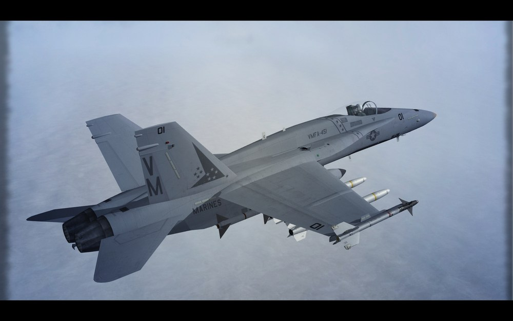 Hornet_VMFA-451.thumb.jpg.de1ec14453c6e2f27d46fe770fd39abe.jpg
