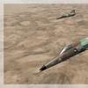 F 21 Lion 07