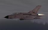 Check Six Tornado GR1
